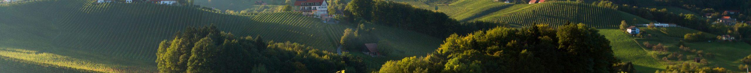 Südsteirisches Weinland, Südsteiermark